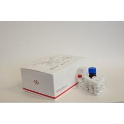 IMUBIND® vWF ELISA, 96 microwell plate