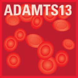 ACTIFLUOR™ ADAMTS13 Activity Assay, 48 tests - CE